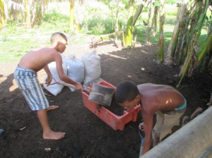 ヤギの糞は大切な肥料、子ども達が集めている