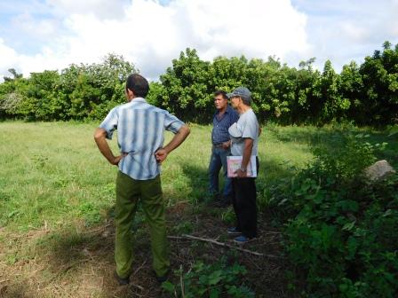 デマハグアのマルシアルの畑、井戸を見に行く